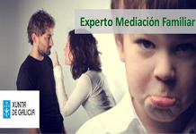 Experto universitario en mediación familiar. Galicia