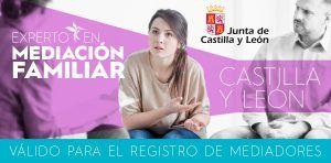 Curso de Mediación Familiar en Castilla y León. Experto Universitario