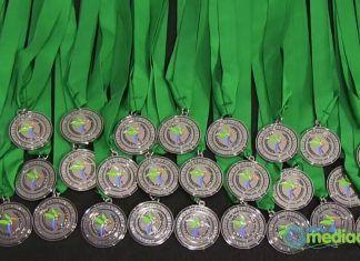 El 1817 de enero se celebra la IV Entrega de Medallas al Mérito Profesional en materia de Mediación. Los premios a la mediación reconocen la labor de los profesionales