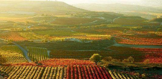 Mediación en La Rioja