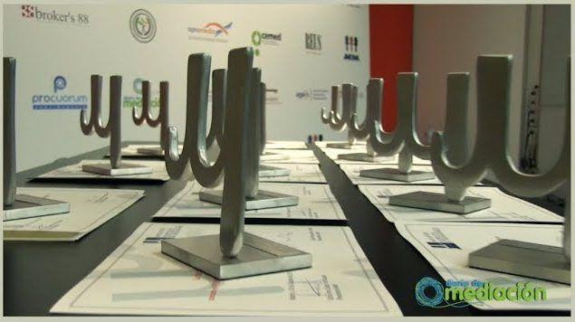Premios AMMI