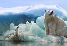 ¿Se podría llegar a un acuerdo sobre el clima con un mediador entre mandatarios?